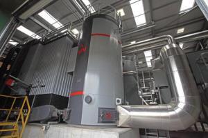P17_bsw_biomass_plant6